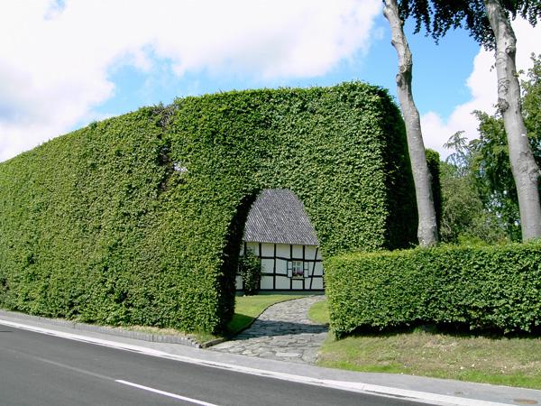 Höfen: Haus der Familie Theissen, Hauptstraße